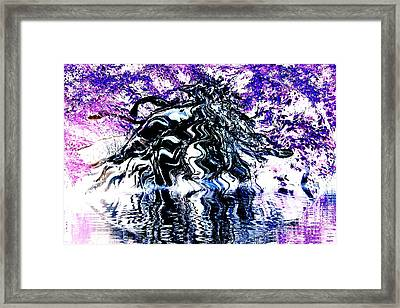 Purple Haze Framed Print by Deborah MacQuarrie-Selib