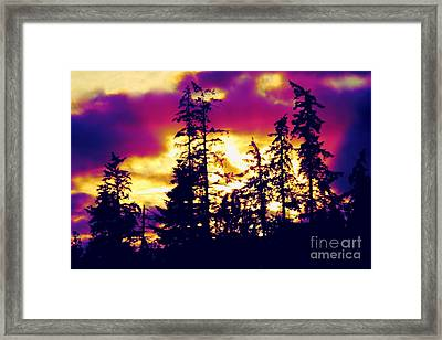 Framed Print featuring the photograph Purple Haze Forest by Nick Gustafson