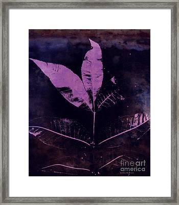 Purple Haze Leaves Framed Print by Sandra Gallegos