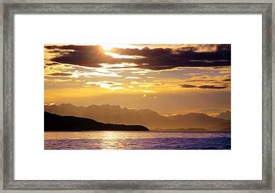 Orchid Sky Framed Print