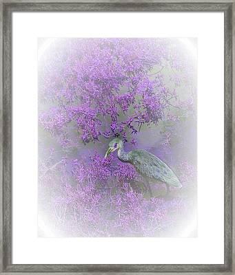 Purple Hideaway Framed Print by Ellen O'Reilly