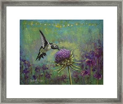 Purple Hummingbird Haze Framed Print by Rachael Rose Zoller