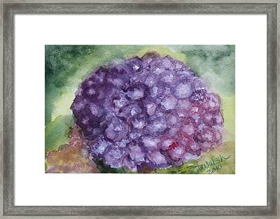 Framed Print featuring the painting Purple Hydrangea by Donna Walsh