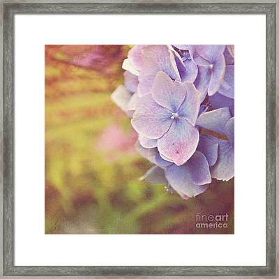 Framed Print featuring the photograph Purple Hydrangea by Lyn Randle