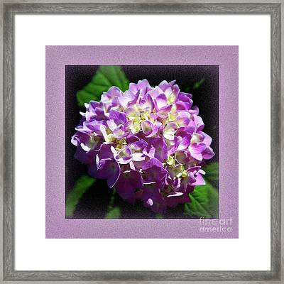 Framed Print featuring the digital art Purple Hydrangea Painterly Square 1 by Andee Design