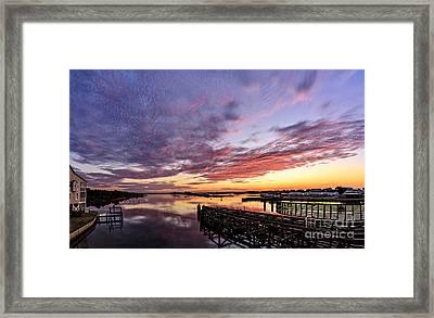 Purple Icw Framed Print