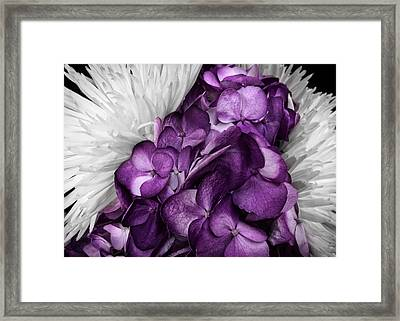 Purple In The White Framed Print