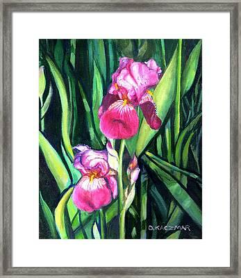 Purple Iris Framed Print by Olga Kaczmar