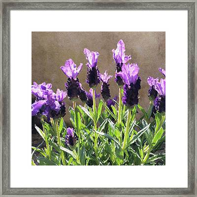 Framed Print featuring the digital art Purple by Julian Perry