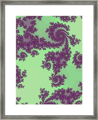 Purple Lace Framed Print