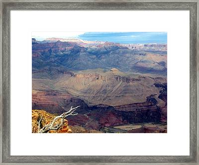 Purple Layers Framed Print by Carrie Putz