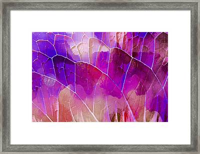 Purple Leaf Texture Framed Print by Tom Gowanlock
