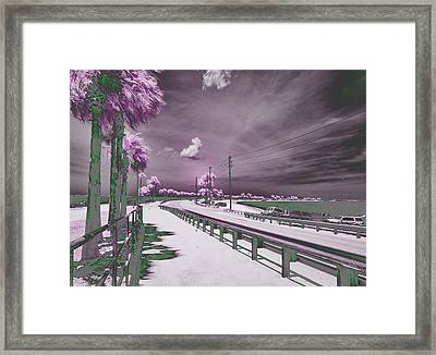 Purple Haze Framed Print by Jim Cook
