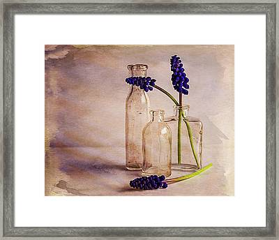 Framed Print featuring the photograph Purple by Mary Hone