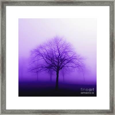 Purple Mist Framed Print by KaFra Art