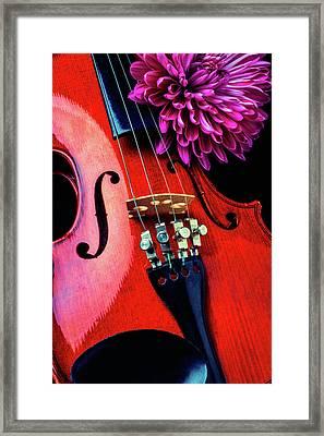 Purple Mum And Violin Framed Print