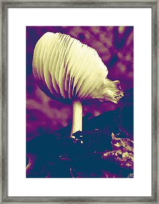 Purple Mushroom Framed Print by Abigail Eremic