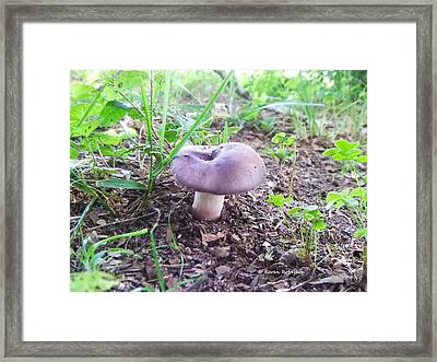 Purple Mushroom Framed Print by Karen Roberson