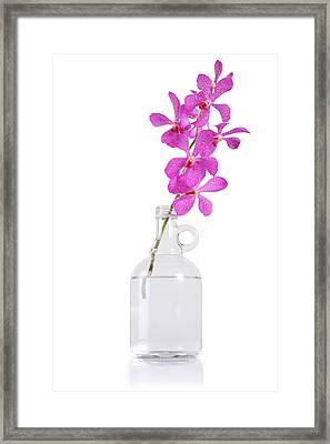 Purple Orchid Bunch Framed Print by Atiketta Sangasaeng