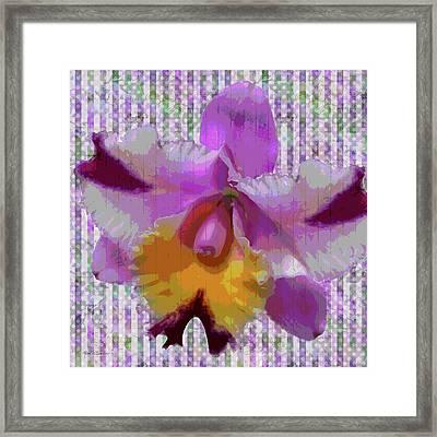 Purple Orchid Design Framed Print by Rosalie Scanlon