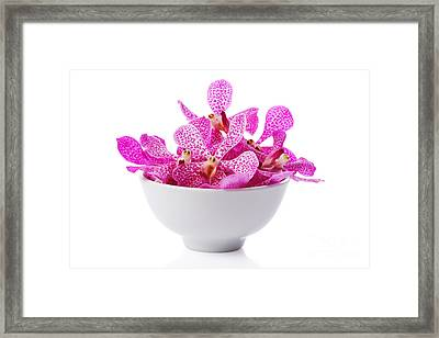 Purple Orchid Head Framed Print by Atiketta Sangasaeng