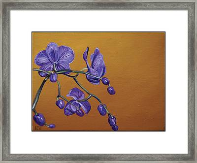 Purple Orchids Framed Print by Edward Williams