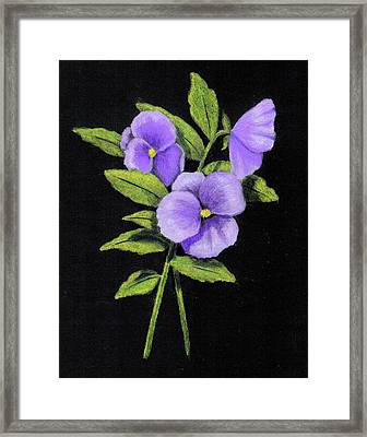 Purple Pansies Framed Print by Joyce Geleynse
