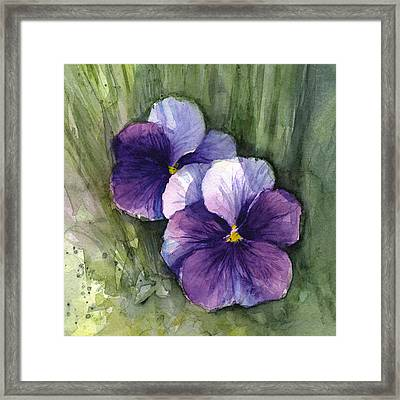 Purple Pansies Watercolor Framed Print by Olga Shvartsur