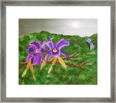 Purple Passion Framed Print by Alanna Hug-McAnnally