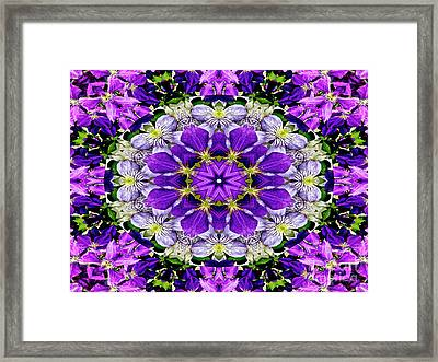 Purple Passion Floral Design Framed Print by Carol F Austin