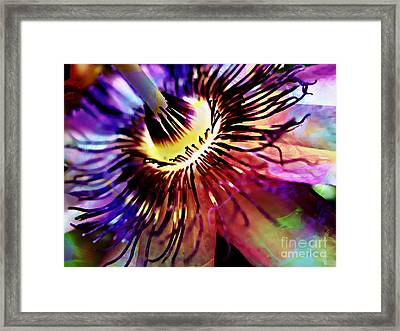 Purple Passion Framed Print by Jolanta Anna Karolska