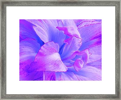 Purple Petals Abstract Framed Print by Gill Billington