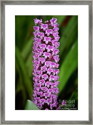 Purple Pillar Framed Print