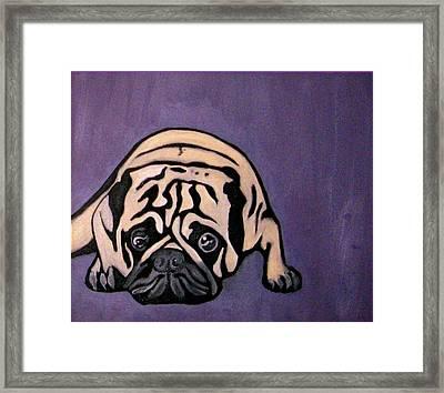 Purple Pug Framed Print