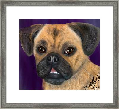 Purple Pug Portrait Framed Print