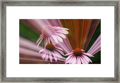 Purple Radiance Framed Print