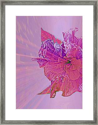 Purple Rays Of Happiness Framed Print