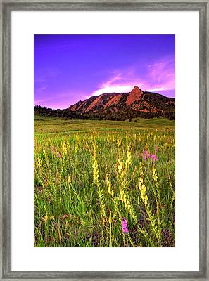 Purple Skies And Wildflowers Framed Print by Scott Mahon
