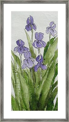 Purple Spring Framed Print