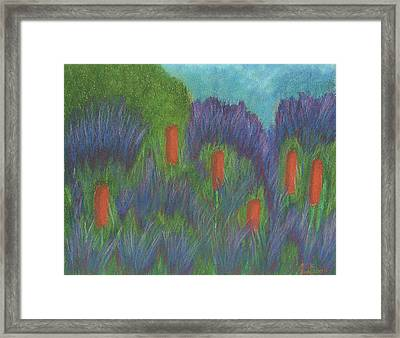 Purple Strife And Cattails Framed Print