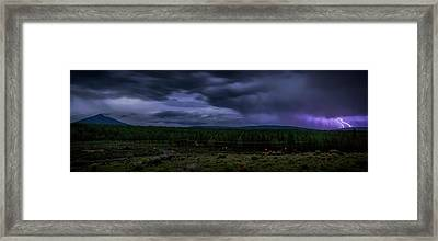 Framed Print featuring the photograph Purple Strikes by Cat Connor