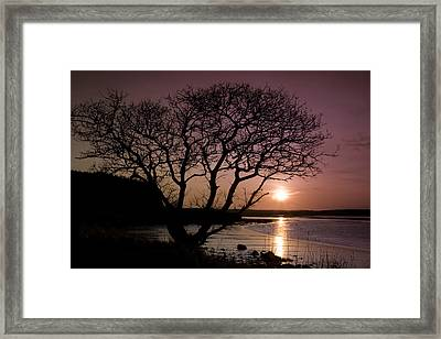 Purple Sunset With Tree And Lake Framed Print by Gabor Pozsgai