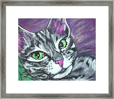 Purple Tabby Framed Print by Sarah Crumpler