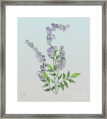 Purple Tiny Flowers Framed Print by Ivana Westin