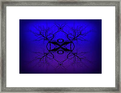 Purple Tree Haze Framed Print by John Williams