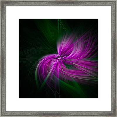 Purple Twirls Framed Print by Noah Katz