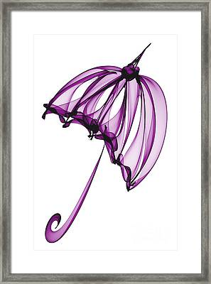 Purple Umbrella Framed Print by Ann Garrett