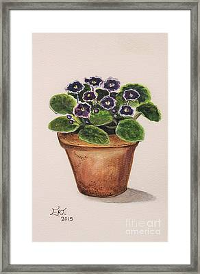 Purple Violets Framed Print