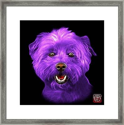 Purple West Highland Terrier Mix - 8674 - Bb Framed Print