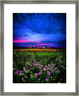 Purples Framed Print by Phil Koch